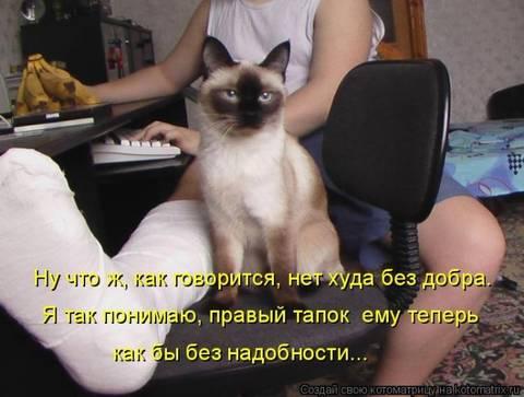 http://s3.uplds.ru/t/MG7Fx.jpg