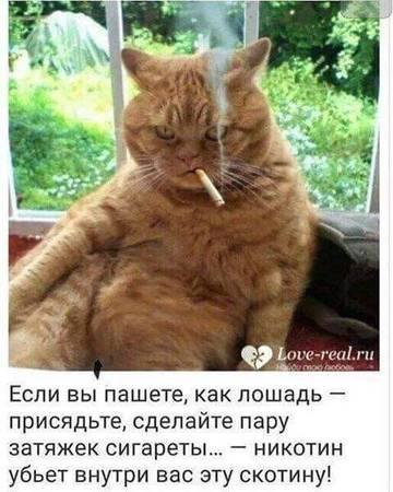 http://s3.uplds.ru/t/NSR6o.jpg