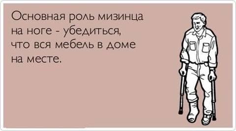 http://s3.uplds.ru/t/xbPtH.jpg